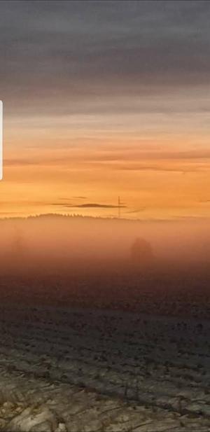 Tog denna vackra bild på väg till jobbet en februari morgon. Bilden är tagen i Himmeta på Körtingegärderna, skriver Ingela Äijä Lennartsson.