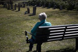 Ett brev har retat upp gravrättsinnehavare på grund av otydlig och ofullständig information. Foto: TT