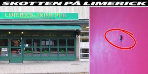Natten till söndag inträffade en skottlossning på Limerick i centrum. Kulhålet i bilden är från butiken Dea Axelssons på andra sidan Garvaregatan, som också träffades under skottlossningen.