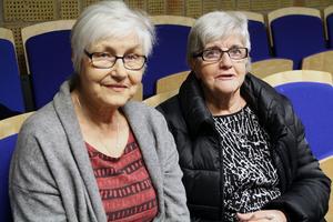 Marga Boustedt och Inga-Lisa Hansson följde kommunfullmäktigemötet på plats i Edsbyn, när kommunfullmäktige tog upp frågan om vindkraftsprojektet Hälsingeskogen.