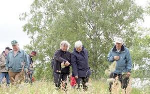 Titta där! Skaran av entusiastiska botaniser följde Birgitt Broström t h i spåren på ängen vid Atora Konnsjön för en vandring bland de gamla tiders blomsteräng.FOTO: KERSTIN ERIKSSON