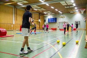 På Alfaskolan går många elever som ingår i den målgrupp som finns till den planerade idrottsanläggningen.