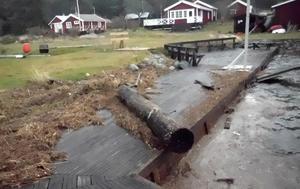 Foto: Carl Hedlund. Starka vindar skapade ett sjösprång i Agöhamn. Vassen och tången längst till vänster i bild visar hur högt vattnet stod under natten. En stock har också flutit i land på bryggan.