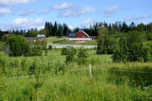 Robert Berghs hästgård i Berg utanför Matfors.