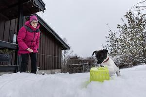 På en möbeltass har Ingrid Ludwig droppat hydrolat av eukalyptus. När Holly hittat rätt på doftbäraren och markerar är Ingrid snabbt fram och ger en belöning i form av hundgodis.