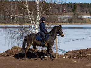 Filippa med nya ponnyn Just Bobby Sparrow.