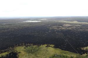 De skogsägare som drabbades av sommarens bränder i Dalarna, Gävleborg och Jämtland ska få ekonomiskt stöd på sammanlagt 72 miljoner kronor, föreslår Skogsstyrelsen. Bilden föreställer en del av skadorna efter storbranden i Älvdalens kommun i Dalarna.