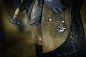 En hovslagare hittar alltid sina egna praktiska lösningar, en magnet på baksidan av förklädet håller hästskosömmarna lättillgängliga.