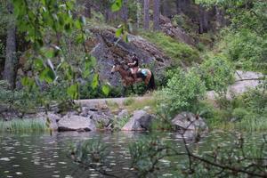 Hästen Opus och Sebastian Fall patrullerar Tivedens nationalpark som en ridande turistbyrå.