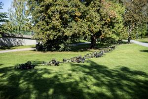 Hemvärnsövning i Sollefteå. Personerna på bilden har inget med artikeln att göra.