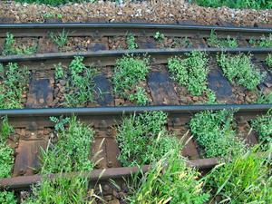 Rostiga järnvägsspår eller en stadsdel som sjuder av aktivitet –  vilket ska vi satsa på? undrar insändaren.
