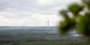 """""""Länsstyrelsen bör sätta konkreta mål för vindkraften och kommunerna bör tydligt väga in vindkraftens klimatnytta i sin planering och då de tar ställning till varje enskild vindkraftspark."""" Foto: Helena Landstedt/TT"""