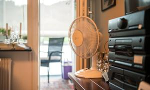 Fläktarna köpte de förra året, eftersom det redan då var varmt i lägenheten trots den svala sommaren.