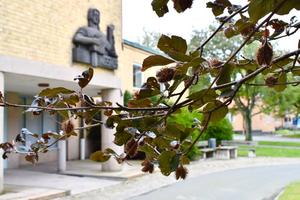 Paret dömdes på torsdagen till fängelse efter förhandlingar vid Eksjö tingsrätt.