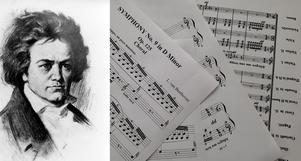 I år skulle  Ludwig van Beethoven ha fyllt 250 år. Foto: TT och Elias Zazi