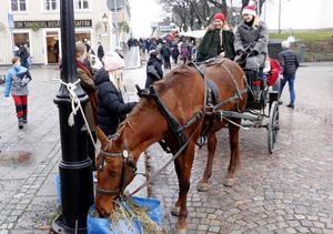 Therese Spjuth och Anna-Lisa Lundqvist turades om att kuska runt i Nora centrum med passagerare. Hästen Dolly tog en tugga mellan turerna ur medhavd matsäck.