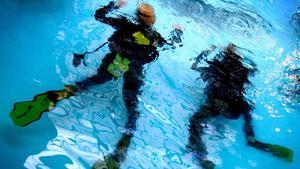 Det inträffar tre dödliga dykeriolyckor i Sverige årligen. Jessica Gow/TT