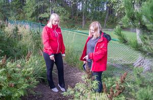 """Här hittades det döda djuret. """"Det syntes att den blivit slagen till döds, men vi sa inte det till barnen utan försökte släta över det"""", säger Caroline Hjalmarsson (t.h)."""