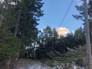 Så här såg vägen ut till Annette Billbergs svärfar i Norrvreta på Singö. Foto: Annette Billberg