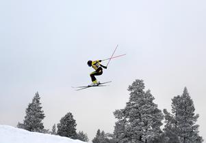 VÖN under kvartsfinalen.Bild:  Pontus Lundahl / TT