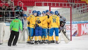 Sverige jublar efter ett av målen mot Kazakstan.Foto: Rikard Bäckman / Bandypuls.se / TT