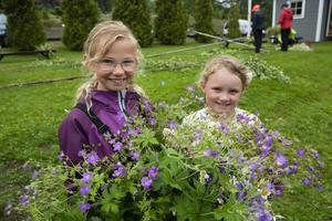 Embla Holmvall och Greta Thalén med några av de blomsterhinkar som plockats för att pryda midsommarstången.