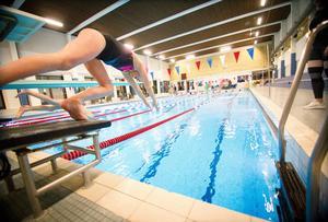 Det är full aktivitet på träningarna som Hudiksvalls simsällskap arrangerar.
