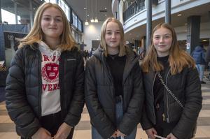 Alma Gustafsson, Vendela Brolin och Mathilda Ekfeldt uppskattade gymnasiemässan och känner att det är ett viktigt val som ska göras. – Man ska känna att det är roligt och att man vill arbeta med det längre fram i livet, säger Mathilda.
