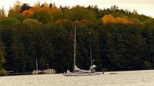 Foto: Roger Ekström
