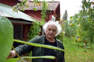 Träd och buskar frodas i trädgården i Hagen, Dala-Floda. Där har Greider bott sedan 2002, men har även en lägenhet i Årsta.
