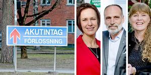 Arkivfoto: Håkan Risberg/Robban Andersson