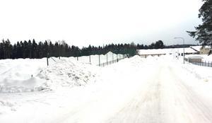 Vid Baldershov ligger den nybyggda grusplanen som kan bli friidrottshall.