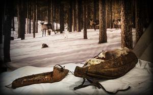 I förslaget lyfts rennäringen fram som viktig att värna om i Härjedalen.
