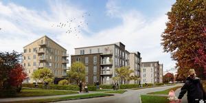 Infart till bostäderna blir från Ekevägen. Nya gator ska heta Cypressgatan och Tujagatan.Bild: Tyrens