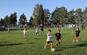 Lilla Champions League på Långnäs. Över 100 unga spelare med spring i benen deltar.