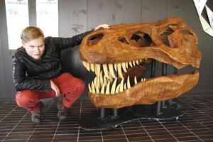 I 1,5 år jobbade Paul Ericson med den dinosaurieskalle som i dag är placerad på Karlfeldtgymnasiet.