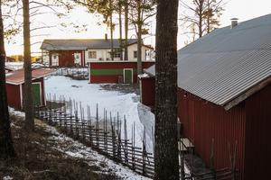 """Den röda danslogen byggdes och invigdes 1953, den vita bygdegården invigdes 1957, och toahuset """"dasset"""" stod klart i början av sommaren 2016. Gemensamt för byggena är att det är byborna som byggt – och till största delen finansierat byggandet genom dansintäkter. Före danslogens tid hölls det allmänna danser i kornlador runt om i Aspåsnäset."""