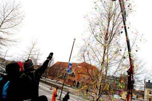 Glad Påsk alla som passerar Rådhuset  i Östersund. Påskbjörken är på plats