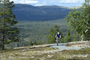 Ett av cykelleden i Idre Fjäll.