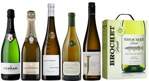 Här är de sex bubblande och vita viner som erhöll guld i sina klasser när vinjournalisterna röstade fram 2016 års godaste och mest prisvärda viner.