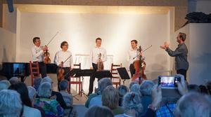 Sommarnattens toner kommer som vanligt innehålla en bred och varierad repertoar. Det bjuds bland annat på kammarmusik, tangoorkester och Bellmantolkningar. Foto: Emelie Stenqvist
