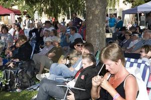 MUSIKFEST. Mycket folk hade hittat till Tors Loge i Torsåker på lördagen när Bluegrassfestivalen 25-årsjubilerade.