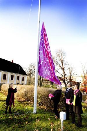 Här hissar Holmberg flaggan för Gävles ansökan om att bli kulturhuvudstad.