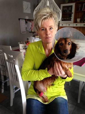 Qasanova är Annas dotters ögonsten och Anna förklarar att eftersom veterinären bedömt prognosen som god och Qasanova bara är knappa året så gör de allt de kan. Förhoppningsvis kommer han efter en längre rehab vara fullt frisk och vara en del i familjen under många år.