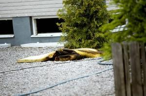 VARNADE. Villabranden i Valbo började i källaren. Personerna som bor i huset varnades av att brandvarnaren tjöt.