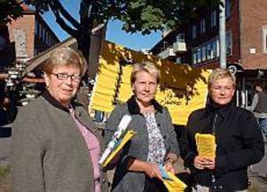 Foto: ULF GRANSTRÖMJourkvinna och medmänniska. Ingmari Olsson, Kristina Sällinen och Sinnikka Högman är alla jourkvinnor på Gläntan, Sandvikens kvinnojour som nu flyttat till nya lokaler.