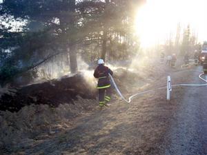 Gräsbränder är oftast ganska odramatiska och relativt vanliga.