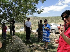 Under en utflykt i Kurdistan hittade vi ett träd med vild pistage. Gladys från Västerås provsmakar.