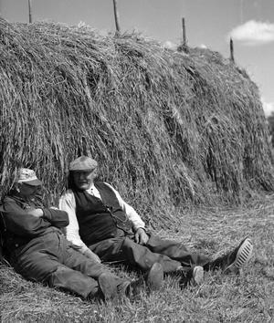 Gerhard Johansson och Theodor Glas tar siesta i höskördearbetet. Kyrkan i bakgrunden (bilden är beskuren) säger oss att fotografen hälsade på i Dingtuna.