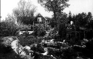 Victorsbergs handelsträdgård, Drottninggatan 38, med bastun i förgrunden. Här sålde Victor Larsson stenpartiväxter, bärbuskar, häckplantor, fruktträd och mycket annat. Han var länsträdgårdsmästare och åtog sig också att göra trädgårdsritningar och anläggningar.